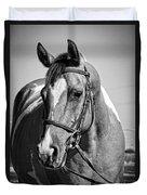 Pinto Pony Portrait Black And White Duvet Cover