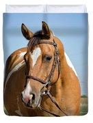 Pinto Pony Portrait Duvet Cover