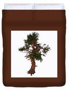 Pinus Aristata Tree Duvet Cover