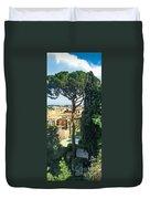 Pinus Pinea Duvet Cover