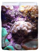 Pipe Fish And Sea Anemone  Duvet Cover