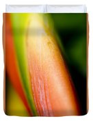 Plant Abstract IIi Duvet Cover