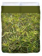 Plant Power 9 Duvet Cover by Eikoni Images