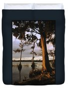 Plantation Gardens, Cypress Trees Duvet Cover