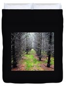 Planted Spruce Forest Duvet Cover