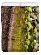Plants And Trees Hawaii 522 Duvet Cover