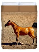 Playful Canter Duvet Cover
