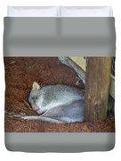 Playing Possum Duvet Cover