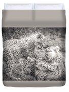 Playtime In Africa- Cheetah Cubs Acinonyx Jubatus Duvet Cover