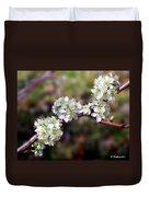 Plum Tree Blossoms Duvet Cover
