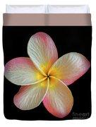 Plumeria Flower On Black Duvet Cover