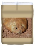 Plump Resting Prairie Dog Laying Down Duvet Cover