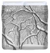 Poets Walk #1 Duvet Cover