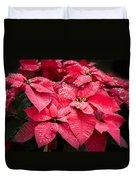 Poinsettia Morning Dew Duvet Cover