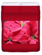 Poinsettias #1 Duvet Cover