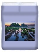 Point Of The Arches Duvet Cover