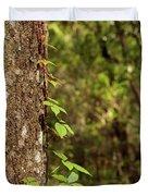 Poison Ivy Climbing Oak Tree Trunk Duvet Cover