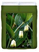 Polygonatum Odoratum Duvet Cover