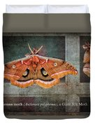 Polyphemus Moth Duvet Cover