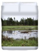 Pond And Swans Duvet Cover