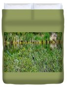 Pond On Cherry Creek Study 2 Duvet Cover