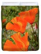 Poppies Antelope Valley Duvet Cover