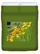 Poppies Hillside Meadow Landscape 19 Poppy Flowers Art Prints Baslee Troutman Duvet Cover