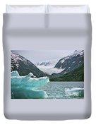 Porter Glacier Alaska  Duvet Cover