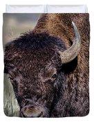 Portrait Of A Buffalo Duvet Cover