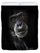 Portrait Of A Chimpanzee Duvet Cover