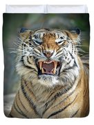 Portrait Of A Growling Tiger  Duvet Cover