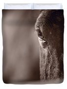 Portrait Of A Horse Kentucky Duvet Cover