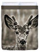 Portrait Of A Male Deer II Duvet Cover