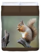 Portrait Of A Red Squirrel  Duvet Cover