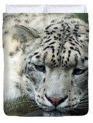 Portrait Of A Snow Leopard Duvet Cover