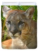 Portrait Of A Young Florida Panther Duvet Cover