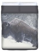 Portrait Of An American Bison Duvet Cover
