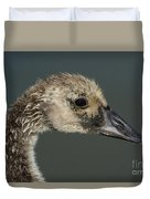 Portrait Of Month Old Canada Goose Gosling Duvet Cover