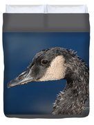 Portrait Of Young Canada Goose Duvet Cover