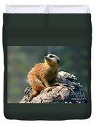 Posing Meerkat Duvet Cover