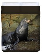 Posing Sea Lion Duvet Cover