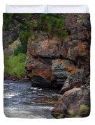 Poudre River 6 Duvet Cover