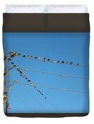 Power Line Birds Duvet Cover