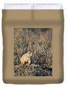 Prairie Dog Alert Duvet Cover