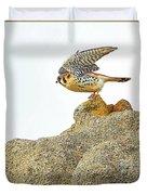 Prairie Falcon Duvet Cover