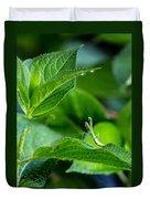 Praying Mantis-1 Duvet Cover