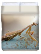 Praying Mantis Close Up Duvet Cover