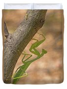 Praying Mantis On The Hunt Duvet Cover