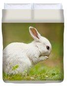 Praying White Rabbit Duvet Cover