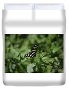 Precious Black And White Zebra Butterfly In The Spring Duvet Cover